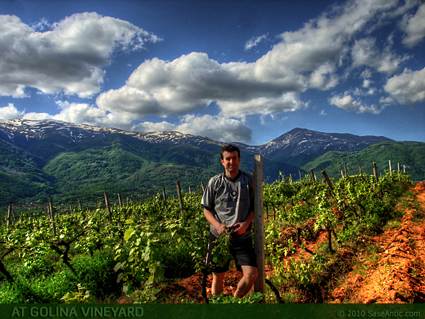 Sase Antic at Golina vineyard (near Golina Lake, below Vratnica). Northeastern part of Shar Mountain and mountain peak Ljuboten in the background.